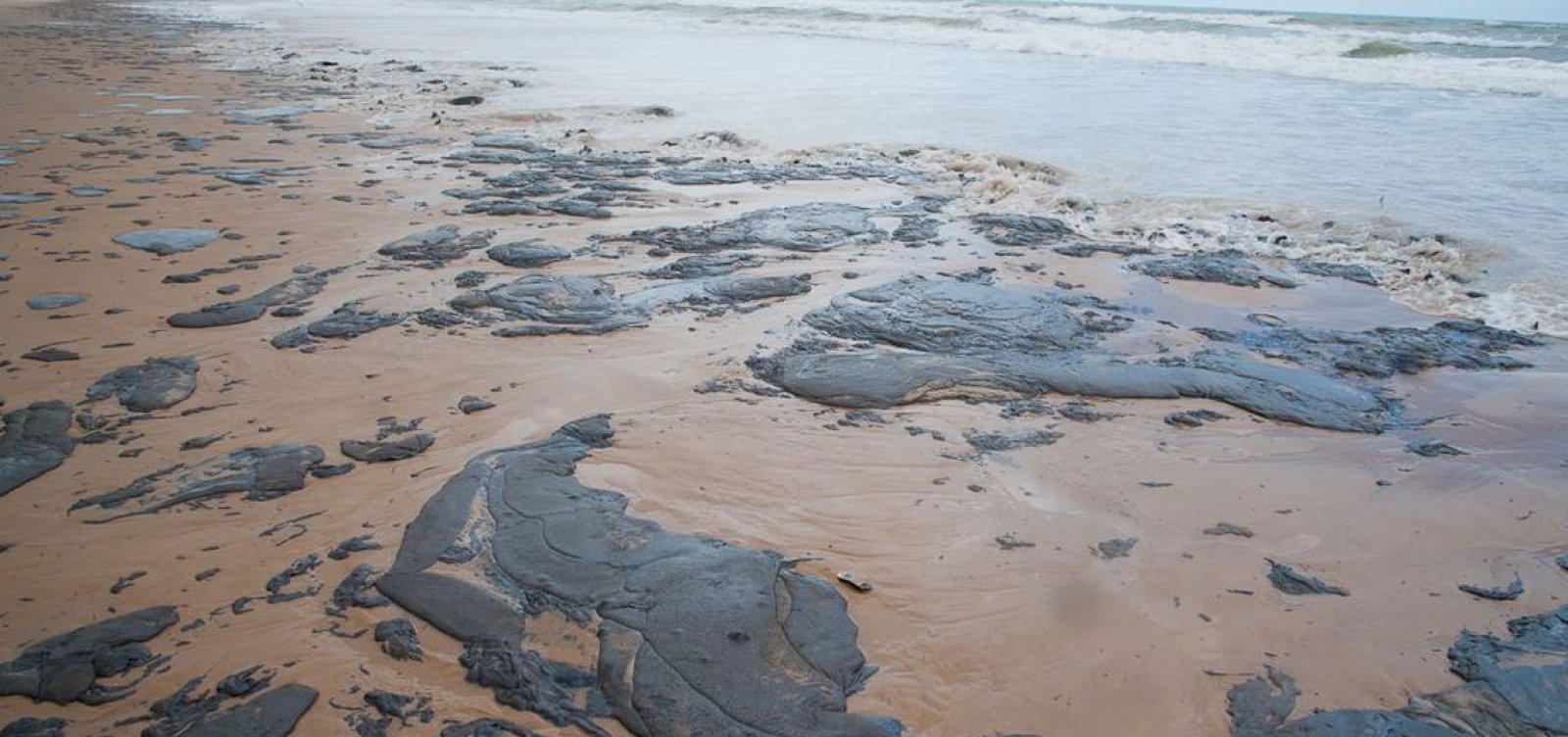Petrobras já retirou mais de 200 toneladas de óleo das praias do Nordeste
