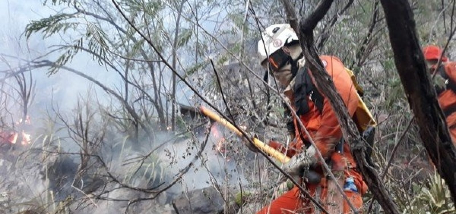 Incêndio de grandes proporções atinge vegetação na Chapada Diamantina