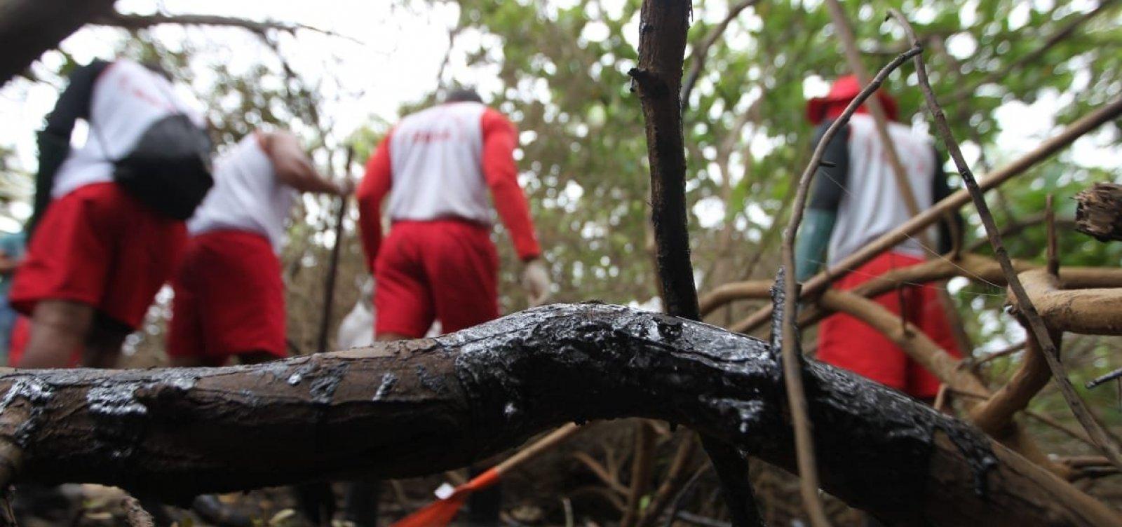 Bombeiros recolhem três toneladas de óleo por dia nas praias do Litoral Norte