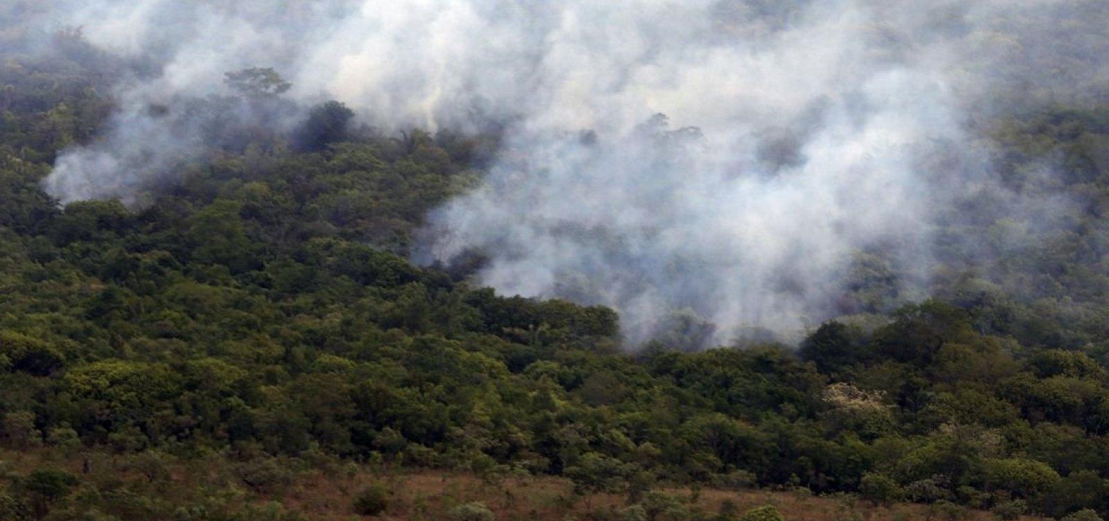 Amazônia tem outubro com o menor número de queimadas da história