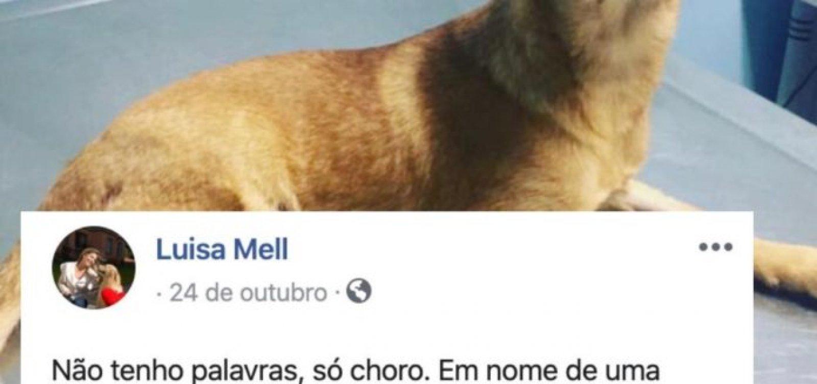 Casa de Oxumarê notifica Facebook por postagens 'difamatórias e ofensivas' de Luisa Mell