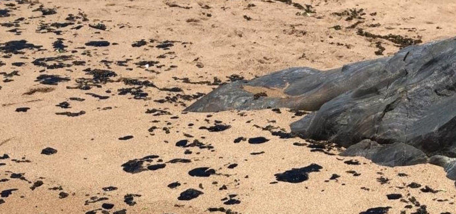 Grupo de voluntários recolhe óleo em praia de Canavieiras