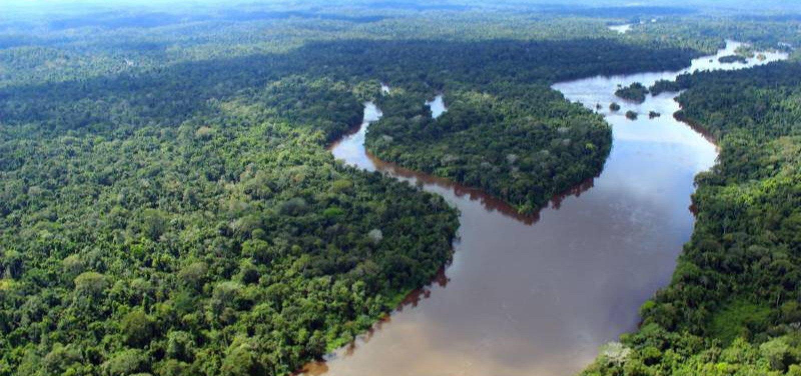 Taxa de desmatamento pode ter aumento de 26% na Amazônia