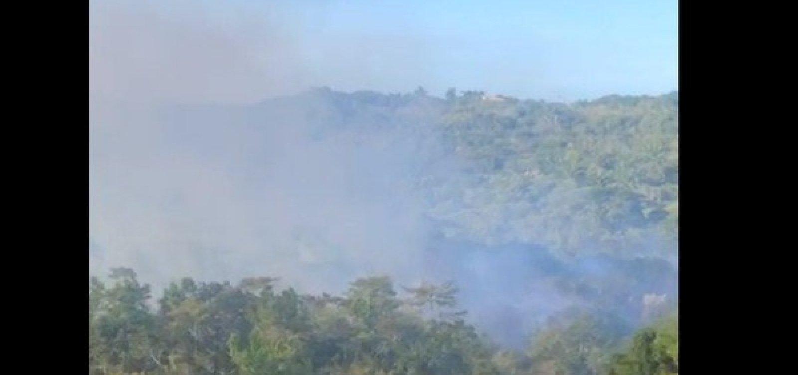 Incêndio atinge vegetação em Trancoso, no sul da Bahia