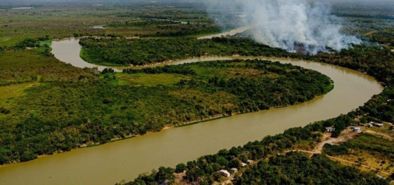Incêndio no Pantanal já atinge 45% de área do MT com maior concentração de onças-pintadas no mundo