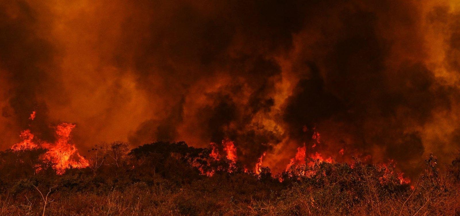'Operação Matáá' da PF busca responsáveis por queimadas no Pantanal