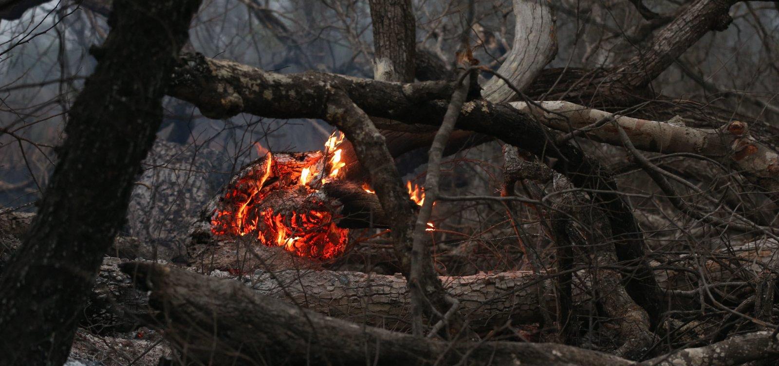 Fumaça das queimadas na Amazônia e no Pantanal atinge países vizinhos