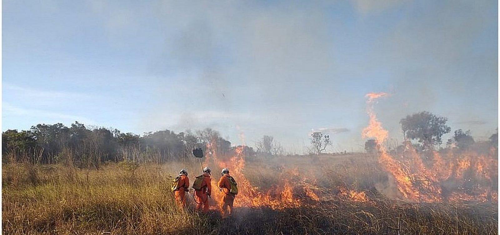 Bahia registra quase 3 mil focos de queima em 2020, diz Inpe