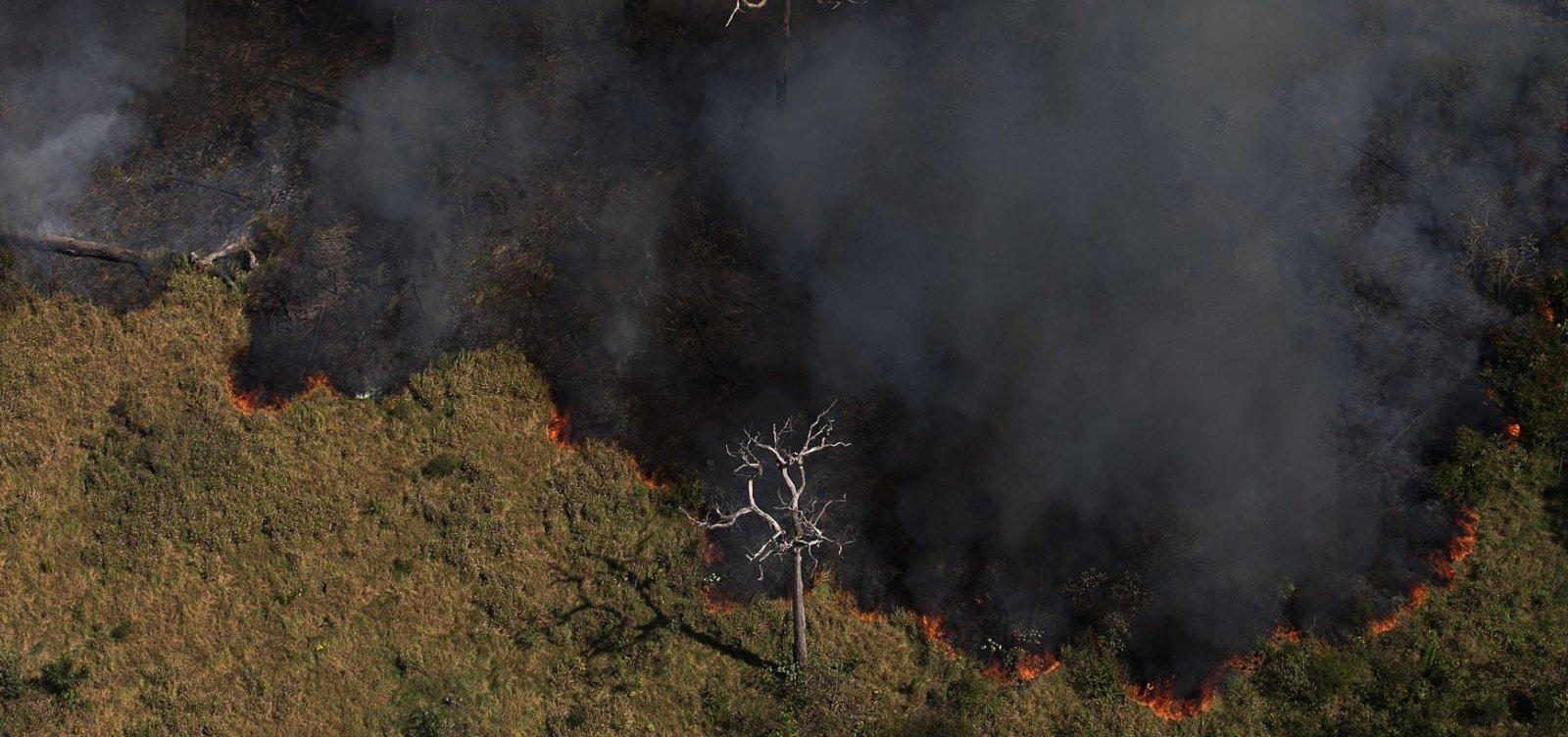 Governo Bolsonaro usa dados da gestão do PT para se defender de críticas ambientalistas