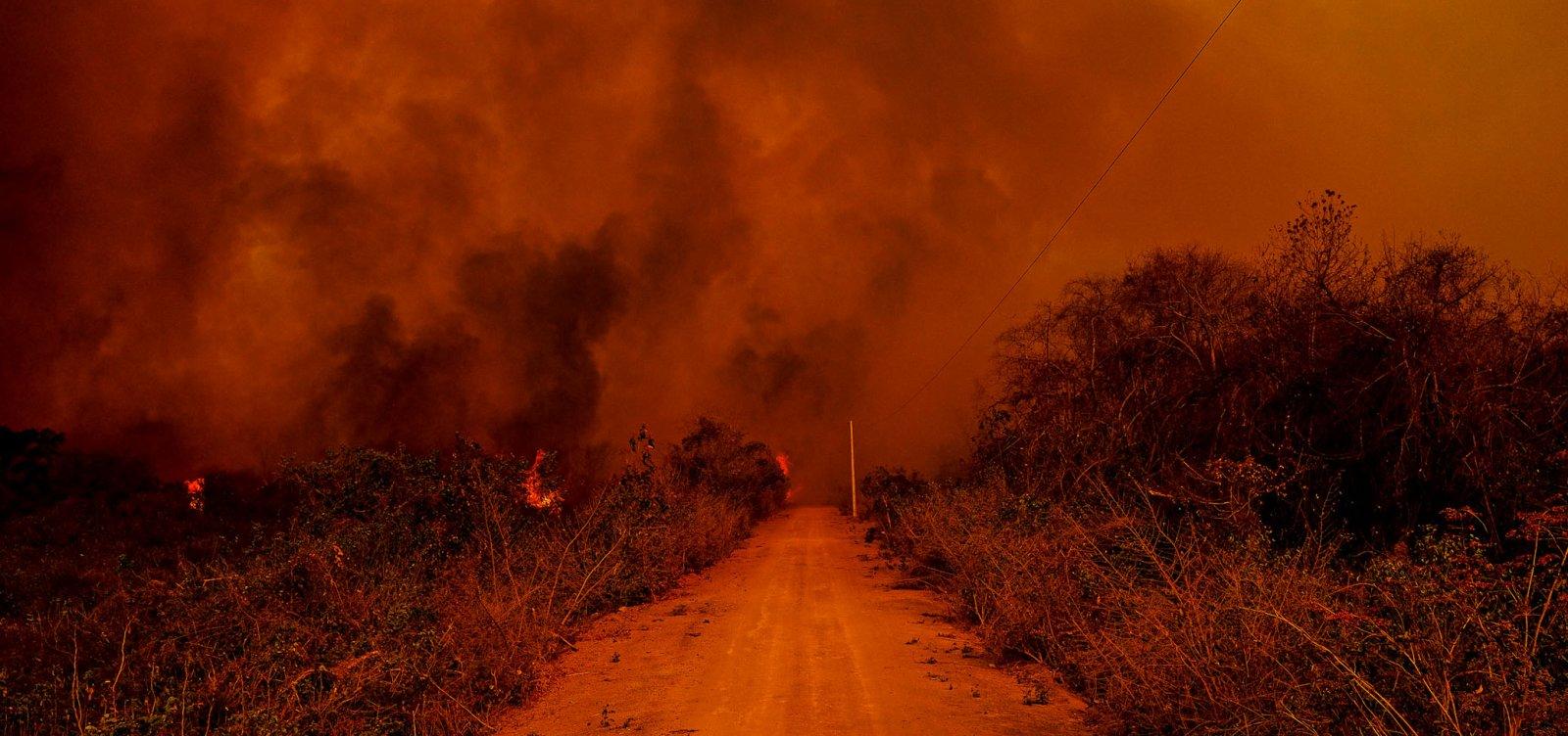 Pantanal bate recorde de focos de incêndios na história