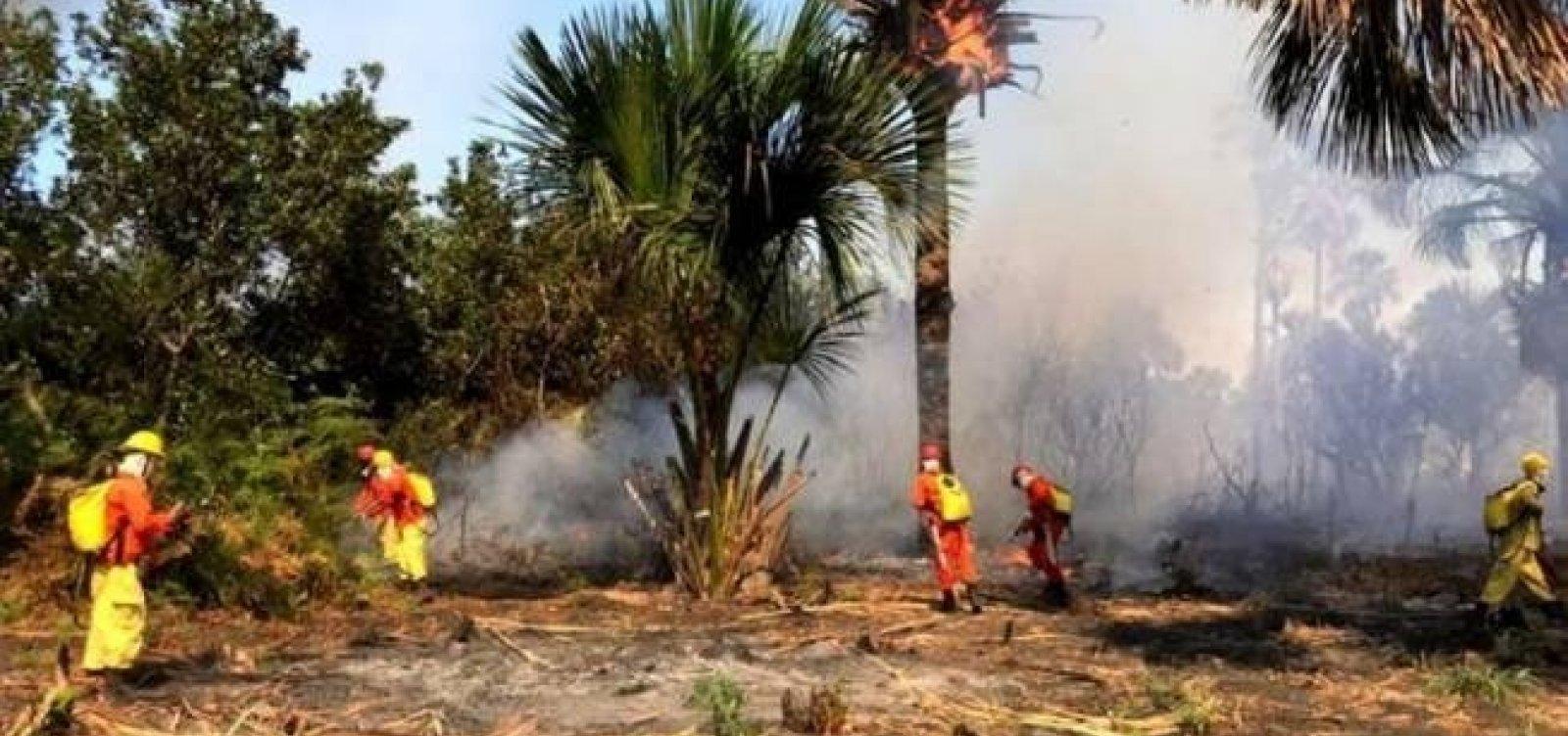 Fogo no oeste da Bahia se aproxima das casas de moradores; governo envia aviões